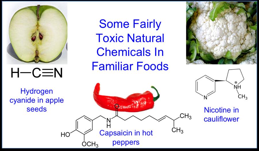 nature-toxic